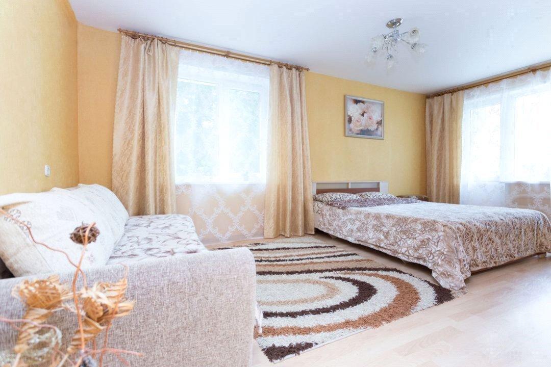 Поверхностная уборка квартиры, химчистка ковра и дивана